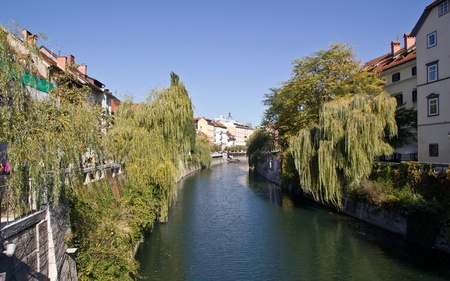 Buildings facing the river in ljubljana with weeping willows on the banks  photo