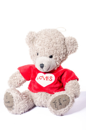 soft toy: Small Grey toy teddy bear soft toy
