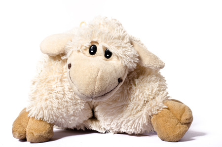 Little Sheep plush soft toy isolated on white