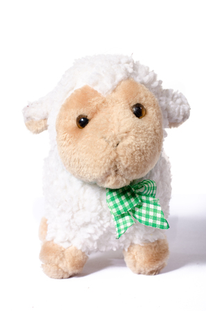 soft toy: Little Sheep plush soft toy isolated on white
