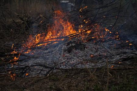 witchcraft: Fire flames background  behavior devil witchcraft wild