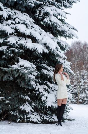 the snow queen: Snow queen. Portrait of a winter woman