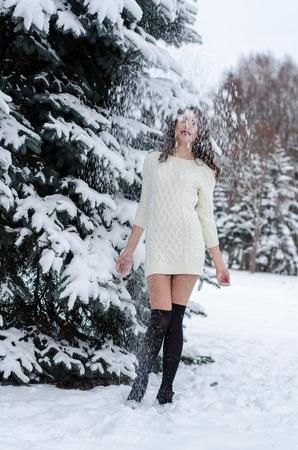 snow man party: Snow queen. Portrait of a winter woman