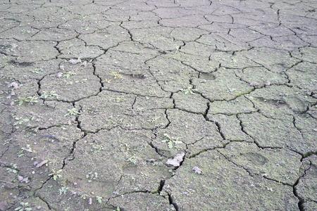 sediento: grietas en el suelo, oscuridad, sed extrema