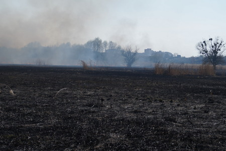 swelter: Cleaning the fields of the reeds and dry grass. Natural disaster. Burning dry grass and reeds