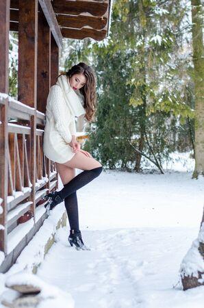 Snow queen. Portrait of a winter woman Archivio Fotografico