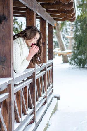Snow queen. Portrait of a winter woman. Archivio Fotografico