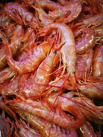 fish vendor: Close up of fresh whole raw shrimp or prawns on display in fish market Stock Photo