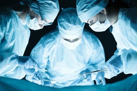 veterinaria: Equipo médico que realiza la operación. Grupo de cirujano en el trabajo en sala de operaciones tonned en azul