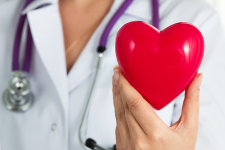 prophylaxis: Female medicine doctor hold in hands red toy heart closeup. Cardio therapeutist, physician make cardiac physical, heart rate measure or arrhythmia concept