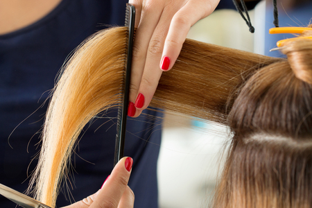 finger tip: Close up view of female hairdresser hands cutting hair tips. Keratin restoration, healthy hair, latest hair fashion trends, changing haircut style, shorten split ends, instrument store concept