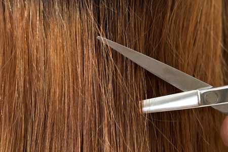 shorten: Close up view of hairdresser scissors cutting long female hair. Keratin restoration, healthy hair, latest hair fashion trends, changing haircut style, shorten split ends, instrument store concept