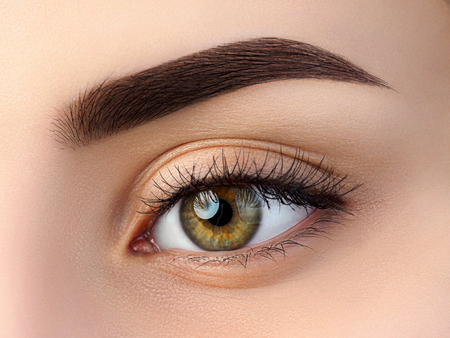Sluit omhoog mening van mooi bruin vrouwelijk oog. Perfecte trendy wenkbrauw. Goed zicht, contactlenzen, wenkbrauwbalk of make-upconcept voor wenkbrauwen