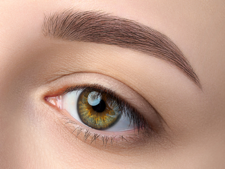 Close up view of beautiful green female eye. Perfect trendy eyebrow. Good vision, contact lenses, brow bar or fashion eyebrow makeup concept Stock Photo
