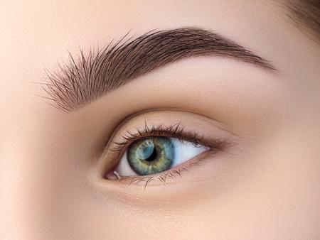 아름 다운 녹색 여성 눈의 뷰를 닫습니다. 완벽한 트렌디 한 눈썹. 좋은 시력, 콘택트 렌즈, 눈썹 막대 또는 패션 눈썹 메이크업 컨셉
