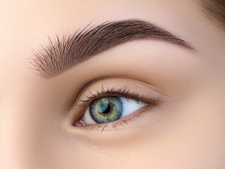 Close up view of beautiful green female eye. Perfect trendy eyebrow. Good vision, contact lenses, brow bar or fashion eyebrow makeup concept Stockfoto
