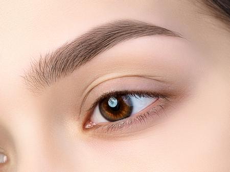 아름 다운 갈색 여성 눈의 뷰를 닫습니다. 완벽한 트렌디 한 눈썹. 좋은 시력, 콘택트 렌즈, 눈썹 막대 또는 패션 눈썹 메이크업 컨셉
