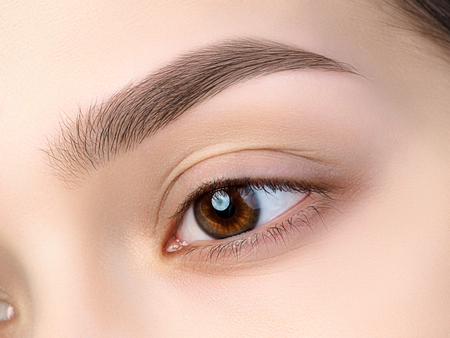 brown eyes: Close up view of beautiful brown female eye. Perfect trendy eyebrow. Good vision, contact lenses, brow bar or fashion eyebrow makeup concept