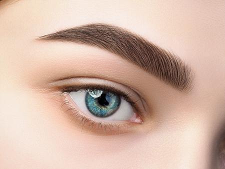 Sluit omhoog mening van mooi blauw vrouwelijk oog. Perfecte trendy wenkbrauw. Goed zicht, contactlenzen, wenkbrauwstang of make-upconcept voor wenkbrauwen Stockfoto