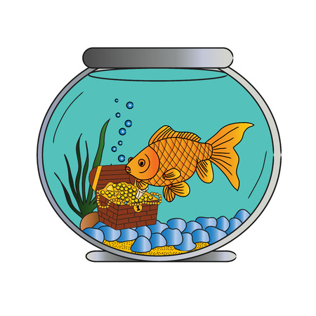 gold fish bowl: Pet Goldfish in Bowl