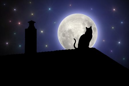 Cat on the roof at night Stock Photo