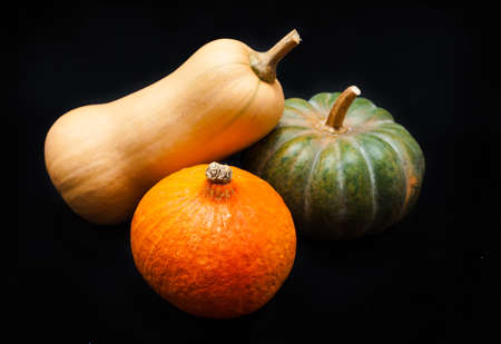 Colorful pumpkin and squash on black background