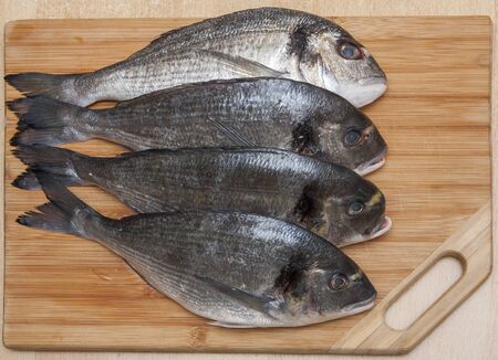 Four fresh Dorada fish on wooden Background