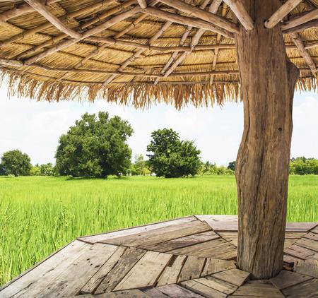 Toon het uitzicht vanuit de binnenkant van het paviljoen, omringd door grasveld