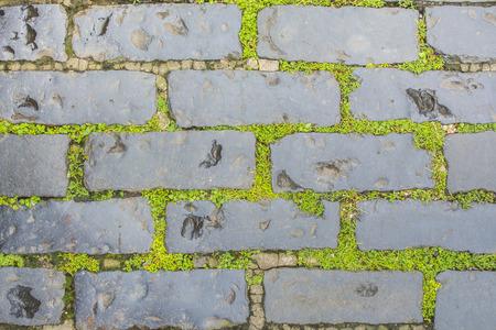 Stone geplaveid met gras op de begane grond