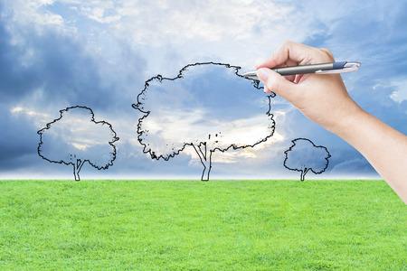 hand tekenen van een boom op het veld gras en hemel achtergrond Stockfoto