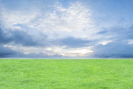 groen gras veld met hemelachtergrond