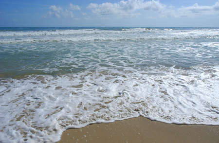 Wave rolling on Beach