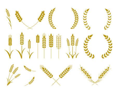 Wheat illustration material Vetores