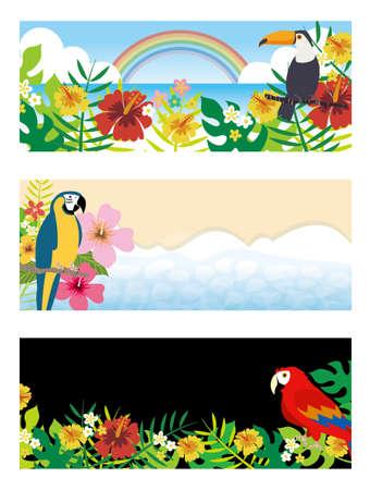 Southern bird and houseplant background set  イラスト・ベクター素材