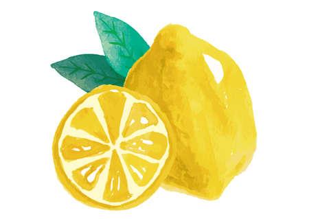 Lemon watercolor hand-painted