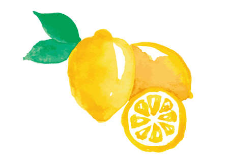 Lemon watercolor hand-painted