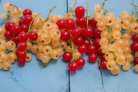 rustical: fresh red and white currants on a blue board closeup