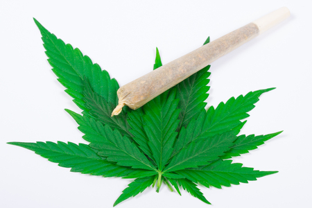 Marijuana with joint (spliff) . The concept of therapeutic marijuana. Stock Photo