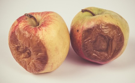 Wrinkled, rotten apple isolated on white background. Close Up. Stock Photo