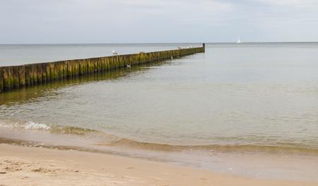 Baltic Sea - landscape by the sea. Sea waves.