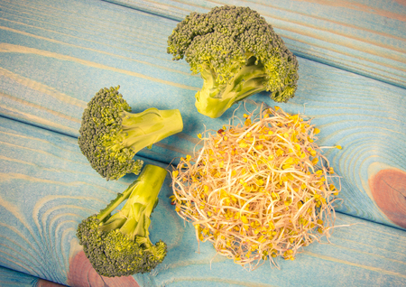 Broccoli sprouts as an ingredient of a healthy diet. A blue wooden background.
