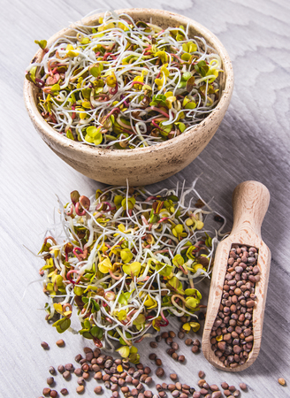 Radish sprouts as an ingredient of a healthy diet. A bright wooden background.