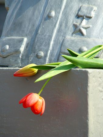 two tulips beside monument, Day of the victory, 9 May