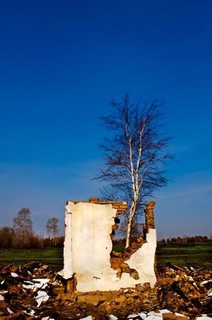 demolished house: demolished house, a pile of bricks and debris