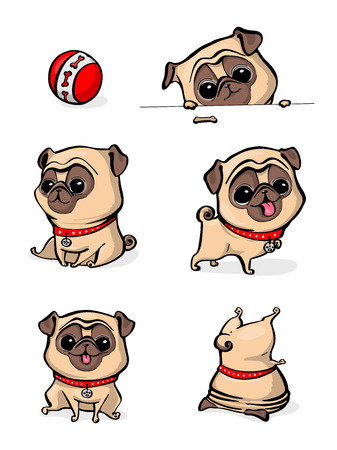 Cartoon character pug dog poses. Cute Pet dog in the flat style. Set dogs. Cute dog of pug breed. Vector collection of cute cartoon pugs puppies, adult dog. Dogs emoji stickers, patches collection.