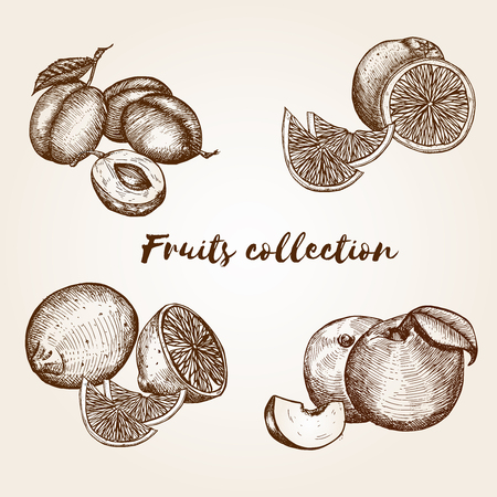 peachy: Hand drawn fruits collection Illustration