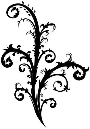 Floral element 36 Ilustração
