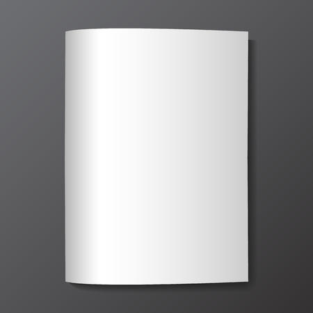 white blank: Blank magazine mockup template.