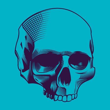 scratchboard: Illustration of the skull on cyan background Illustration