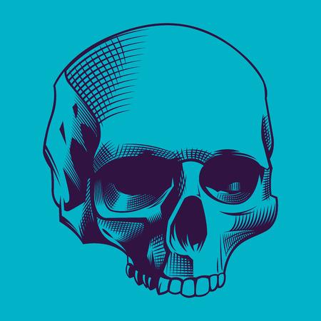 cyan: Illustration of the skull on cyan background Illustration